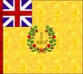 10th Foot Regimental Colour.jpg
