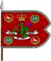 15th Light Horse King Guidon.jpg